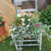 A chair planted with flowers