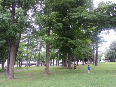 A Day in the Park (Brockville, Ontario)
