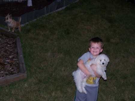 Cannoli (Bichon Frise) being held by a boy.
