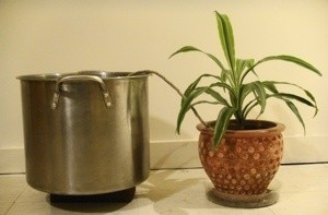 Wick Watering to Container Plant