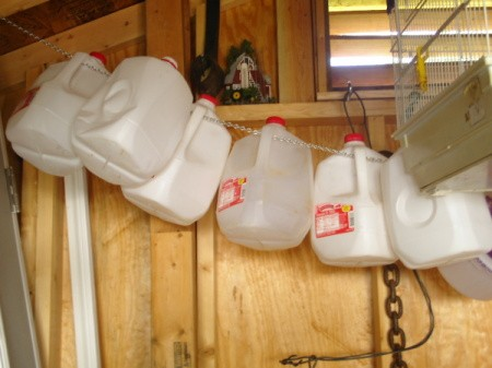Milk jugs hanging in storage building.