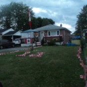 Canadian flags decorating a home and yard.