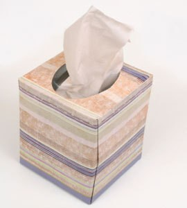 Uses for Tissue Boxes