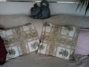 Newly recovered throw pillows.