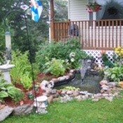 Transplanted Garden and Pond