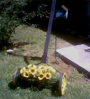 Push Mower as Lawn Decoration