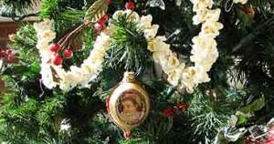 Vintage ornament and popcorn garland on tree.