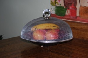 Mesh screen dome cover over fruit.