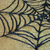 up close spiderweb
