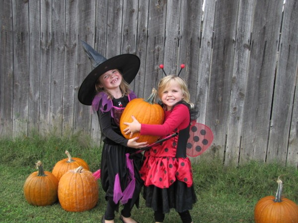 Witch and ladybug holding a pumpkin.