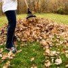 Raking Up Fall Leaves