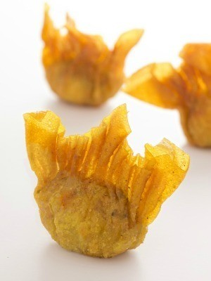 Wonton Appetizer Recipes