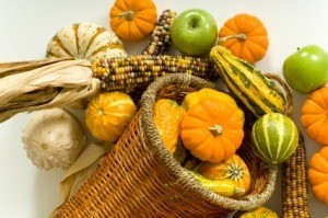 Photo of a beautiful cornucopia with gourds, corn and apples.