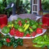 Use Seasonal Vegetables 
