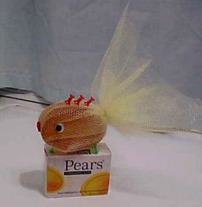 Pears soap fish.