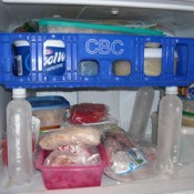 Frugal Freezer Shelf