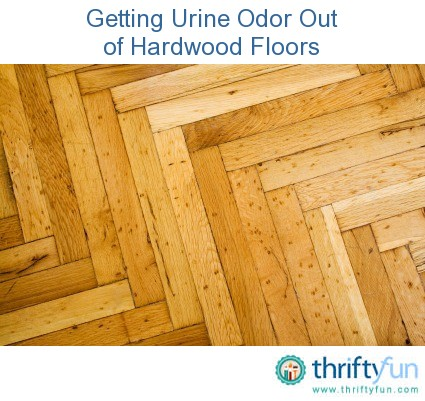 Getting Urine Odor Out Of Hardwood Floors Thriftyfun