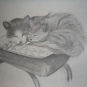 Sketch of cats on kitchen chair.
