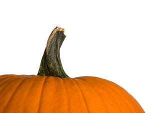 Photo of a pumpkin.