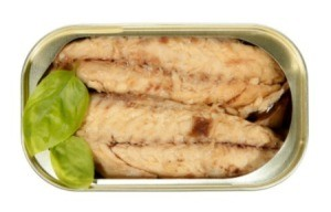 Canned Mackerel