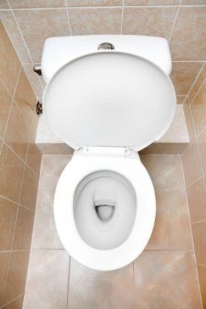 Photo of a toilet bowl.
