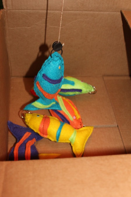 Felt fish in box.