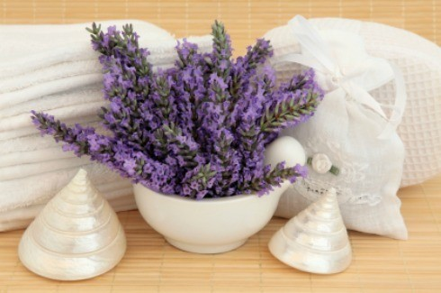 Uses for Lavender