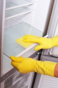 Cleaning Your Refrigerator Thriftyfun