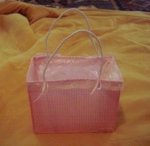 Plastic Canvas Purse
