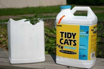 plastic cat litter container