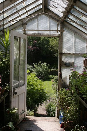 View from inside greenhouse out toward garden.