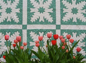 Spring Tulips and My Grandmother's Quilt