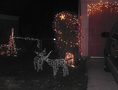 Lighted deer.