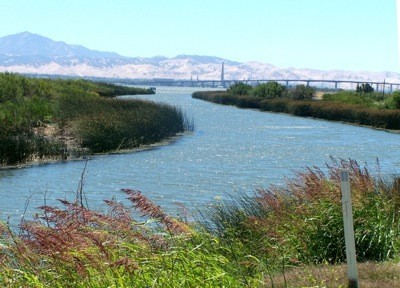 River at California Delta
