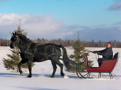 closeup of sleigh