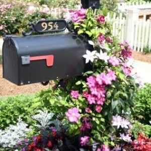 Landscaping Your Mailbox