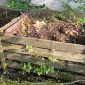 wood sided compost pile