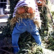 Mooning Scarecrow