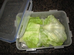 container with a head of lettuce