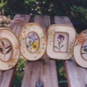 framed pressed flowers