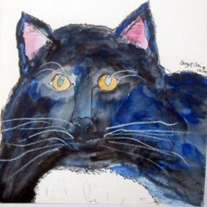 Watercolor of black and white cat.