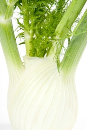 how to use fennel stalks