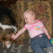 Dog and baby.