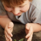 child looking at a plant sprout