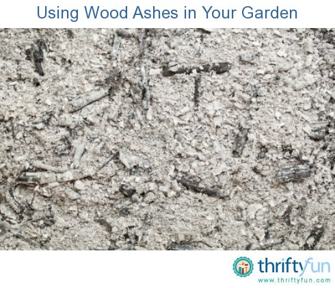 Using Wood Ashes In Your Garden Thriftyfun