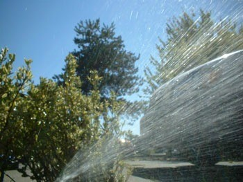 Install Your Own Sprinkler System