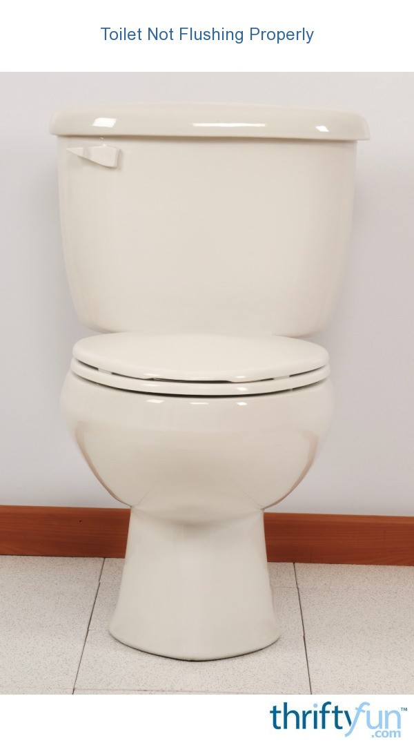 Toilet not flushing properly thriftyfun - Commode not flushing completely ...