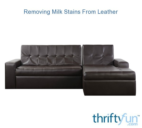 Removing Milk Stains From Leather Thriftyfun