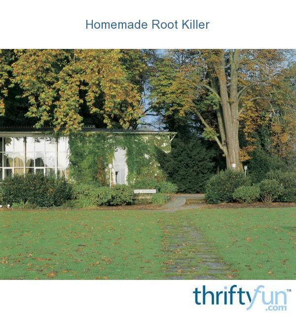 Homemade Root Killer Thriftyfun
