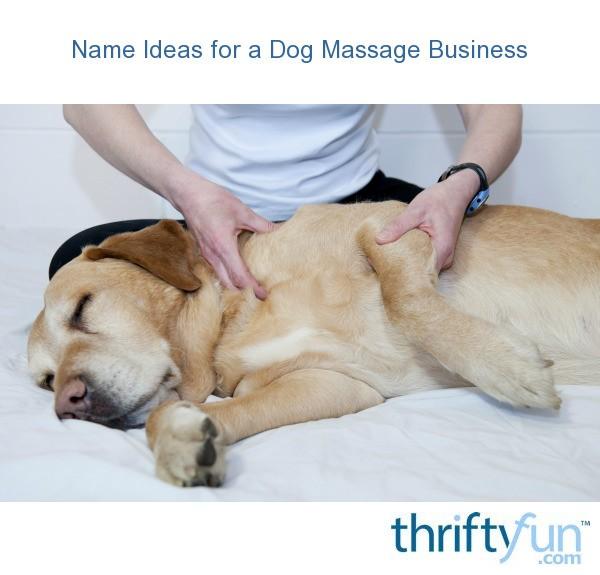 Name Ideas for a Dog Massage Business | ThriftyFun